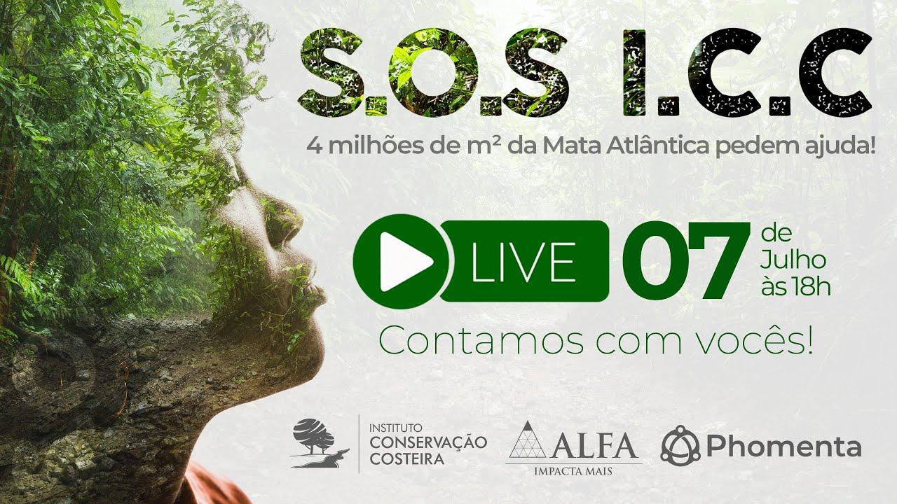 """É hoje! Live """"SOS ICC"""" sobre a defesa da Área de Proteção Ambiental - Baleia Sahy"""