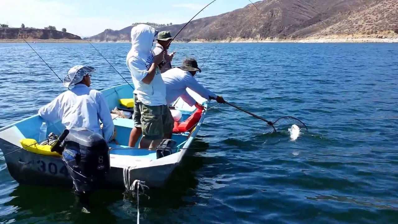 Castaic lake striper fishing 2013 youtube for Castaic lake fishing