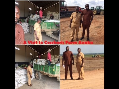 A visit to Coscharis farm Anaku, in Anyamelu LGA Anambra state. This is largest farm in Nigeria