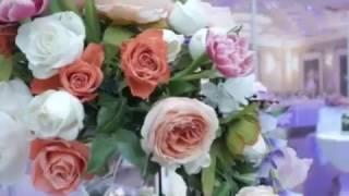 Ведущий на свадьбу Александр ИванОвич Wedby me