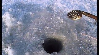 Ловля корюшки зимой на зимние удочки и махалки - Рыбколов!
