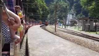 黒部峡谷トロッコ電車の旅(富山県)