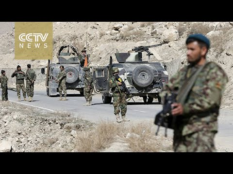 Army airstrikes kill 11 Taliban insurgents in Afghanistan