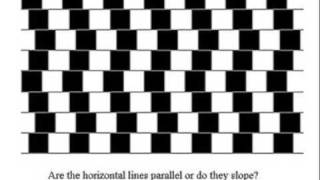 Illusions are cool, funny and strange