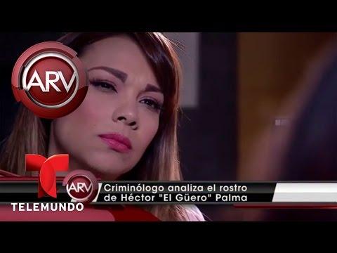 Experta analiza el rostro del narco de El Güero Palma | Al Rojo Vivo | Telemundo