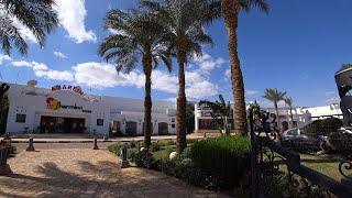 Египет 2021 Шарм Эль Шейх Sharm inn Amarein