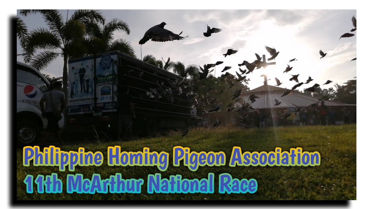 PHA 11th McArthur National Race 2021   Peter Yap Cup