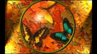 2Sky - Autumn Butterflies (Original Mix)