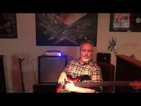 Gary Willis 20th Anniversary Ibanez Fretless 5 String Bass