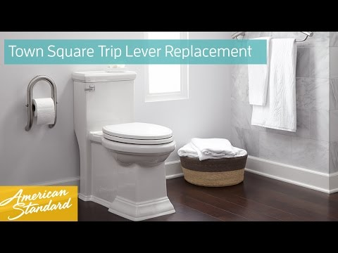 How to Replace a Trip Lever for a Town Square Toilet