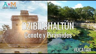 🇲🇽 Cenote y Pirámides Mayas cerca de Mérida - Dzibilchaltun