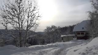 Gasthof Moosbach in Nordrach, Sonnige Winterlandschaften