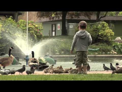 Vernon, British Columbia - Explore Downtown Vernon - RTOWN TV