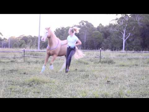 All The Kings Horses- Rhianna & Huey