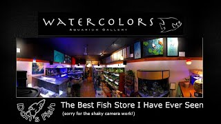 The BEST Fish Store I Have Ever Seen!!!