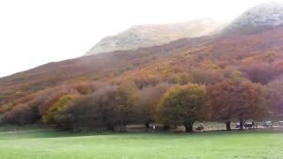 Monte Cucco, pian delle macinare 23/10/10 HD