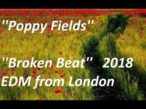 ''Poppy Fields - Broken Beat'' - Electronic Dance Music from London 2018.