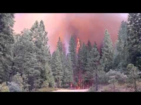 Madera County fire video - flames