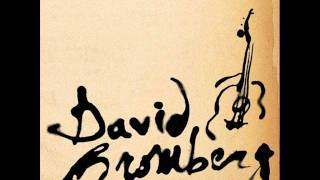 Watch David Bromberg I Like To Sleep Late In The Morning video