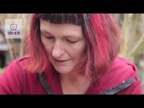 Planting Hazel trees from Seed / Stratification of Hazel seeds