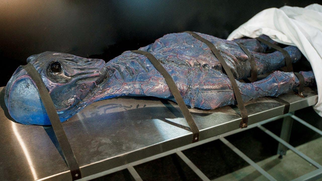 В России сби ли НЛО. Тела пришельцев вывезли в институт Москвы
