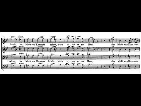 Franz Schubert - Wehmut D. 825 for a cappella Male Chorus (1825)