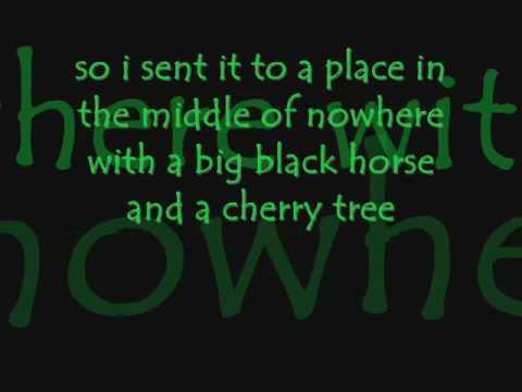big black horse and a cherry tree karaoke