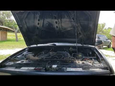 Mazda B2300 Is Alive
