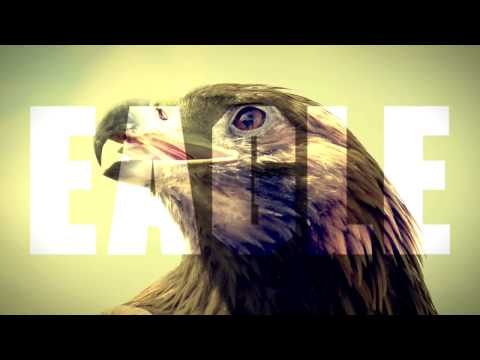 Felix Jaehn feat. Lost Frequencies & Linying - Eagle Eyes (Official Lyric Video)