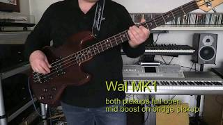 Bass Cover - RUSH - Mystic Rhythms - with Wal bass Mk1