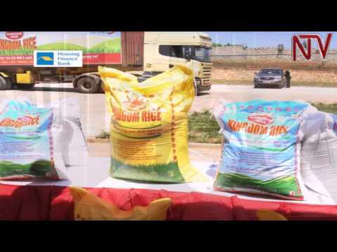 uganda-development-bank-to-support-small-holder-rice-farmers