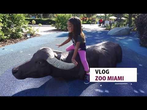 Vlog: Zoo Mia