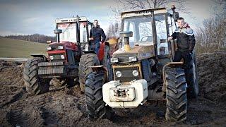 Jesień 2015 w Gospodarstwie Rolnym Mokrzyn