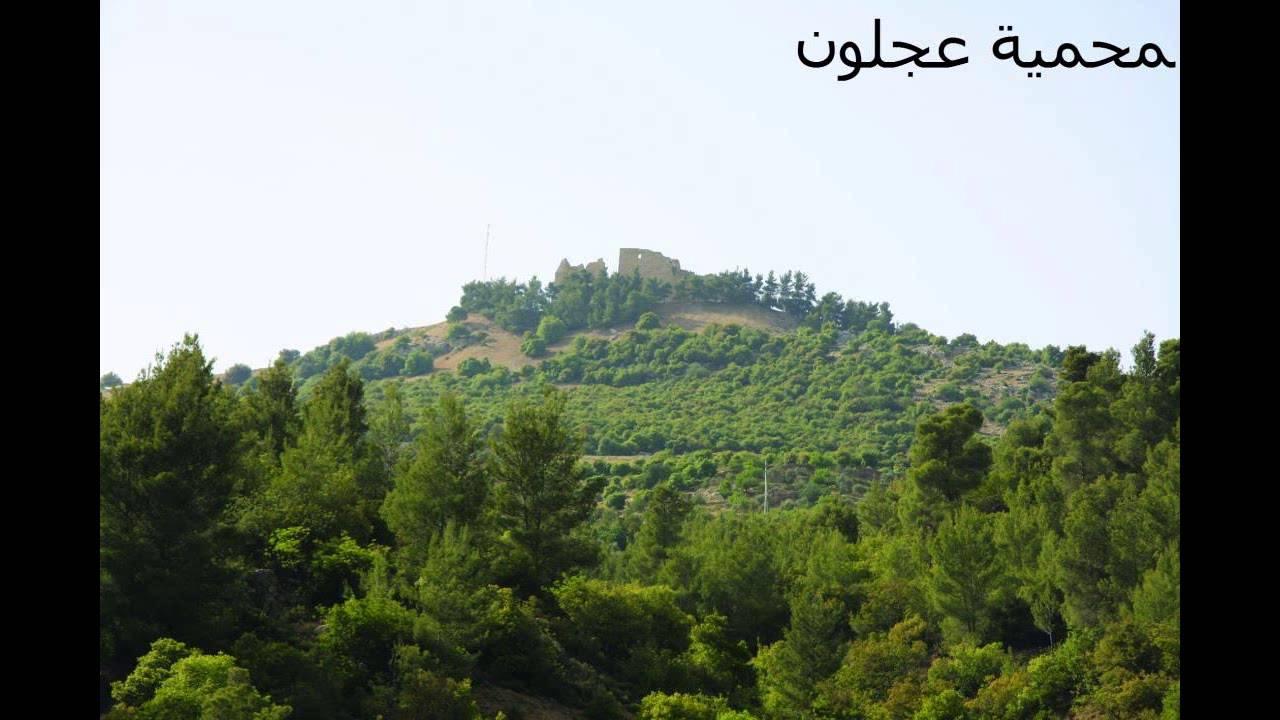 موسوعة شاملة عن المحميات الطبيعية - حصريا على منتدى واحة الإسلام Maxresdefault