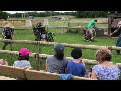 Harbes Family Farm 2018 Pig Race Show