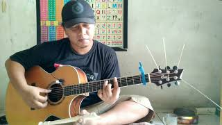 My Heart Will Go On - Celine Dion (fingerstyle cover)
