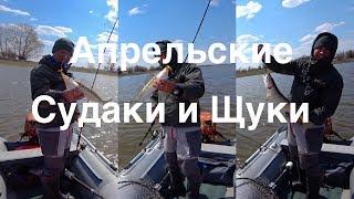 Судак и Щука в Апреле Астраханская рыбалка 2018