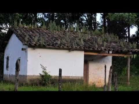 Honduras y su Gente