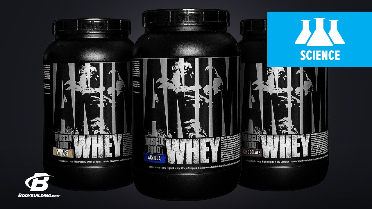 Universal Nutrition Animal Whey | Science-Based Overview - YouTube