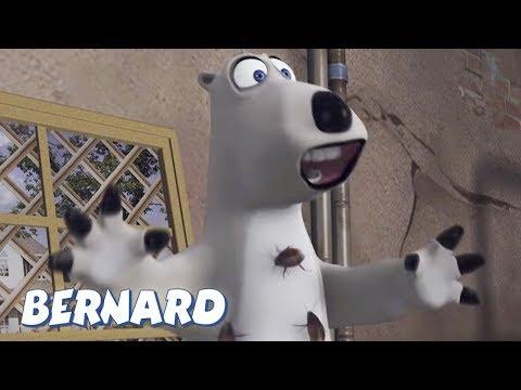 Bernard Bear   The Fumigator AND MORE   30 min Compilation   Cartoons for Children