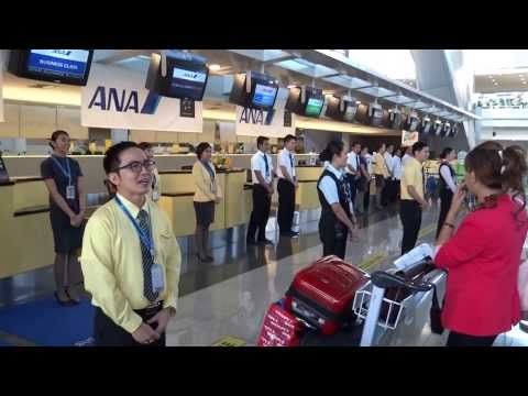 ANA Airline Greetings Japan Airlines