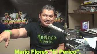 Mario F El Perico 2 Youtube