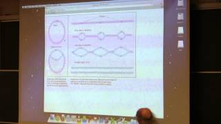 Kevin Ahern s BB 350 (Nucleic Acids/DNA Replication) 2014 - #15