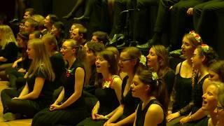 Kleiner grauer Falter (Maybebop) - Psycho-Chor der Uni Jena