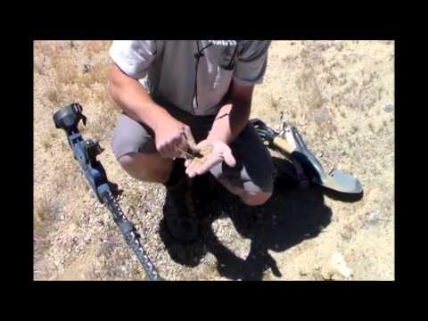Mojave Desert Gold Prospecting