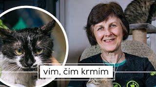 KOČIČÍ DŮM  Dvě stě opuštěných kočičích očí vpříběhu Jarmily Tauberové