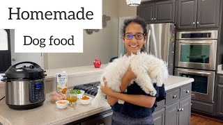 Homemade Healthy  Dog Food Recipe   Homemade Dog Food Cooking For Your Dog
