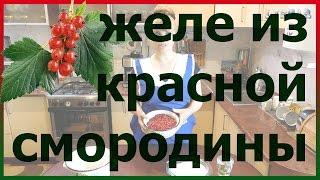 Желе из красной смородины поречки без желатина. Заготовки на зиму из красной смородины поречки.