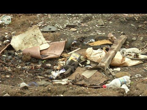 Опасная свалка образовалась в одном из дачных обществ в Бердске