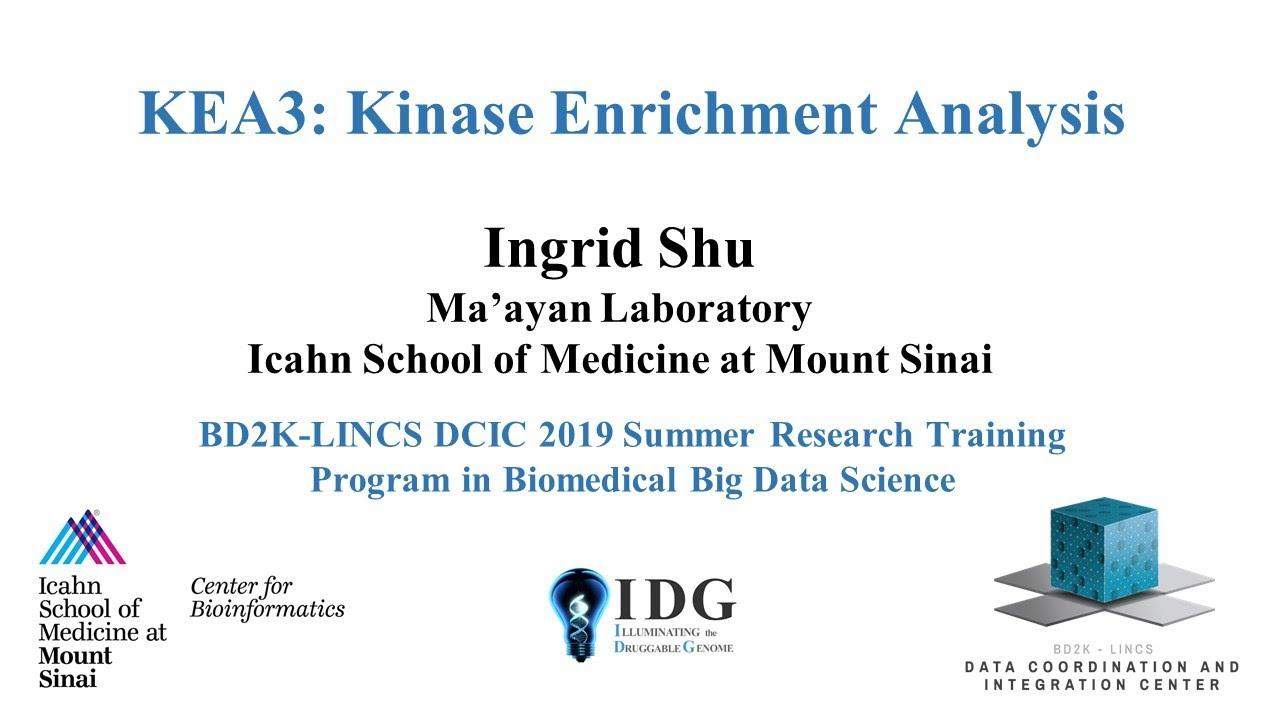 KEA3: Kinase Enrichment Analysis Version 3